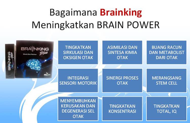 cara kerja brainking plus