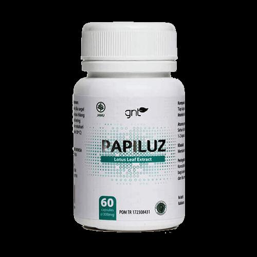 papiluz